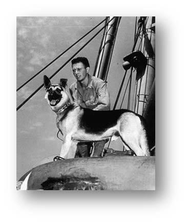 Mascotas a bordo